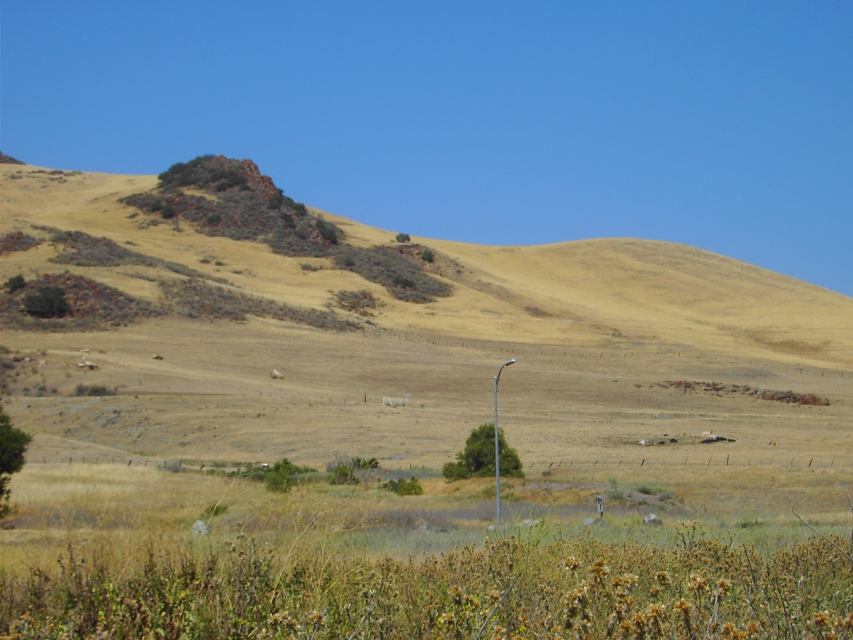 yellow-hill.jpg
